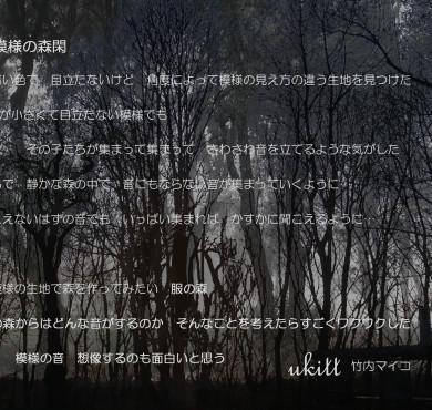 模様の森閑 展示会説明のコピー